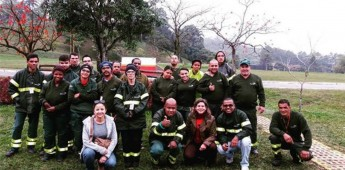 """""""Projeto Paraguatá"""": parceria que prevê recomposição de 29,2 hectares de floresta nativa"""