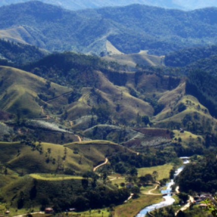 Manifesto das Organizações da Sociedade Civil do Vale do Paraíba pela não extinção da Fundação Florestal