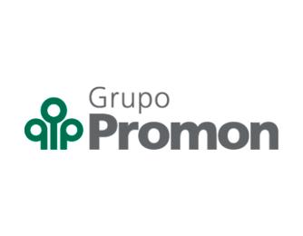 Grupo Promon